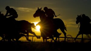 A setting sun at a past Hawkesbury stand-alone Saturday meeting. Photo: Jenny Evans