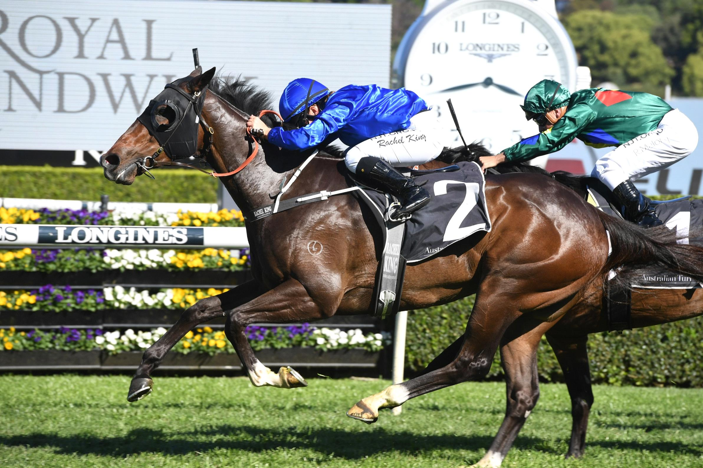 Flit can bounce back into the winner's stall on Saturday.