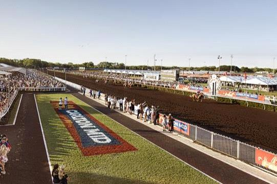 We have a Country Cracker for Saturday's Darwin meeting.