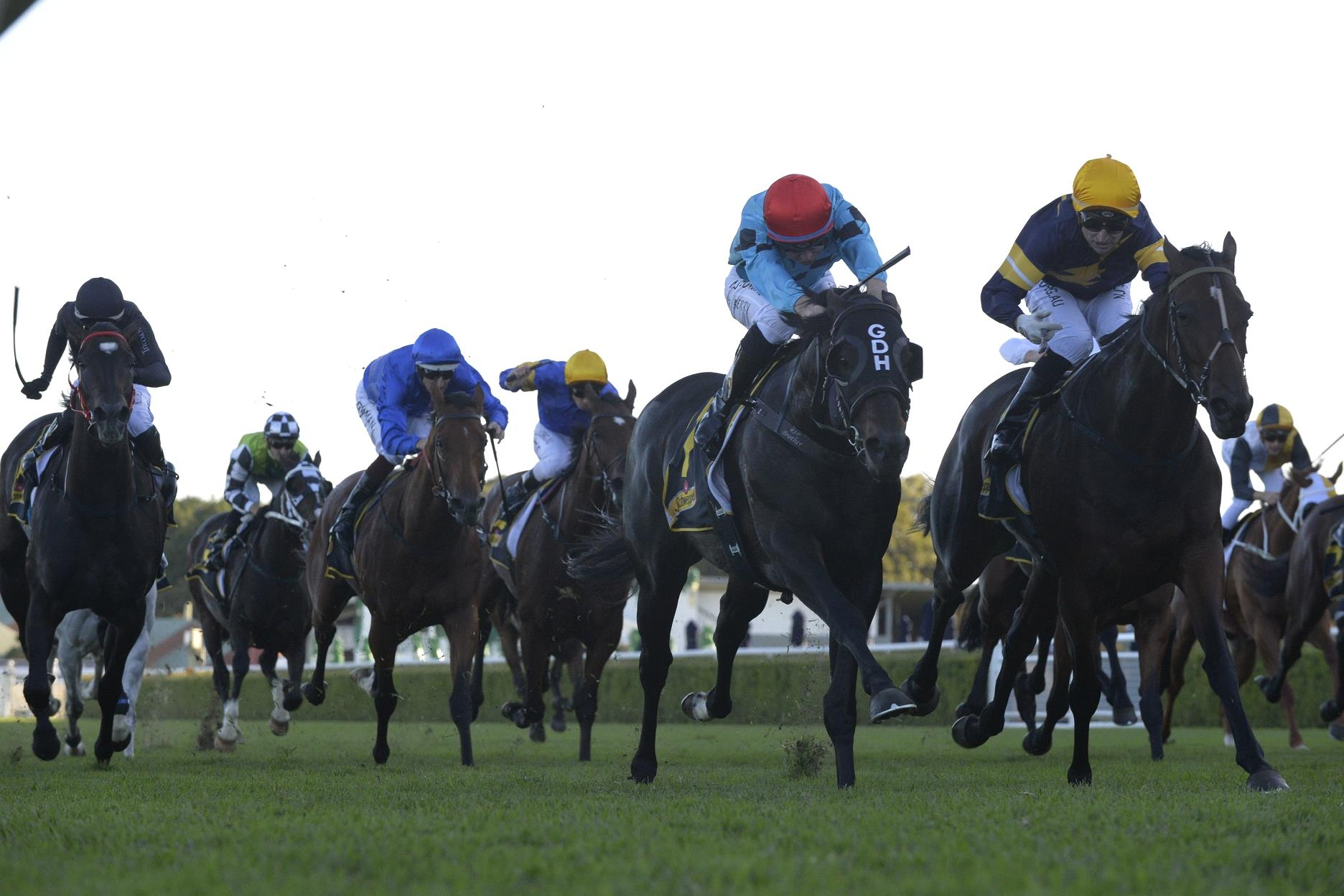 Tofane and Pierata fighting out the finish of the 2020 All Aged Stakes.