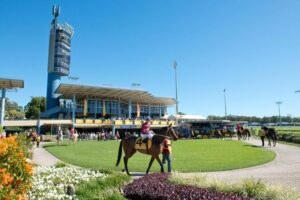The Sunshine Coast won't be quite this sunny but still winners to be had.