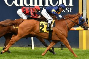 Mahamedeis kicked off a big day for the flying Nick Ryan stable.