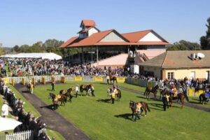 The Wagga Cup Carnival kicks off on Thursday