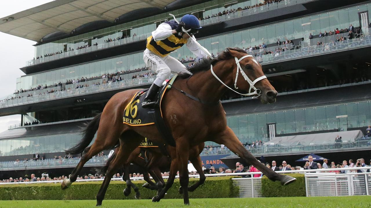 Ron Stewart drives Selino home to win the Schweppes Sydney Cup. Photo: Mark Evans/Getty Images