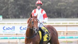 Michael Dee returns to the mounting yard after winning on Starry Legend at Bendigo. Picture: Racing Photos