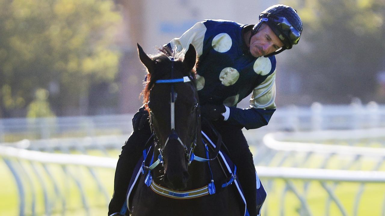Glen Boss cannot wait to unleash Sir Dragonet in the Queen Elizabeth Stakes. Picture: Getty