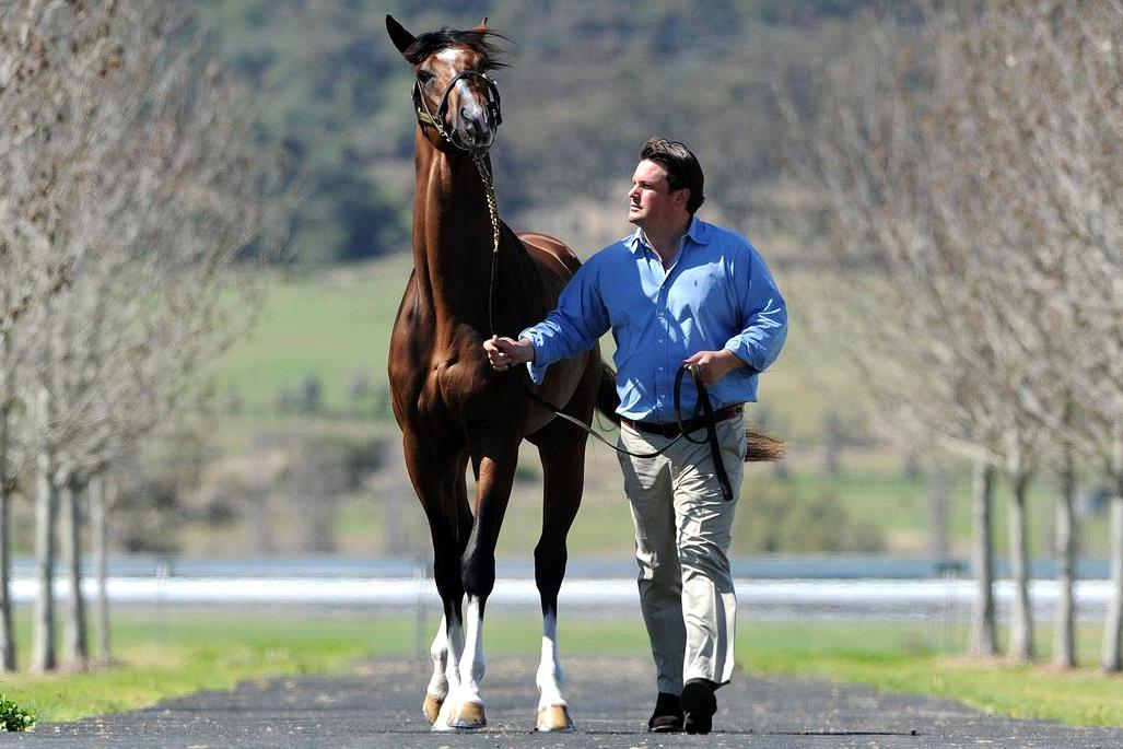 Paul Messara is the trainer to follow at Muswellbrook