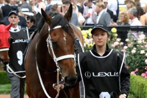 Hoping one of my favourites can get the job done at Doomben on Saturday.