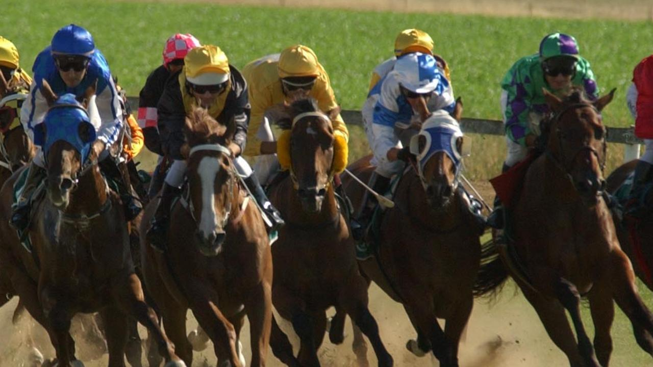 It's a strong day's racing at Tamworth on Tuesday. Photo: Barry Smith.