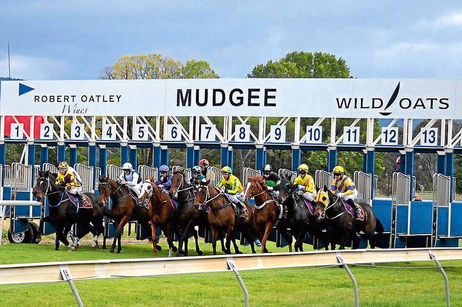 Luck in running is likely to decide the winner of the Country Championship Qualifier at Mudgee Sunday