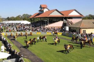 It's a tough punting program at Wagga on Thursday.