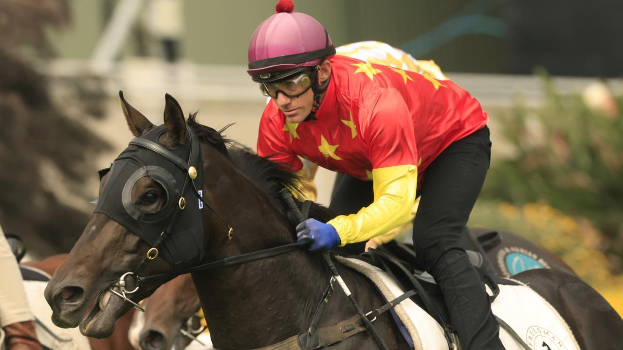Luke Currie rode Blue Diamond Stakes winner Artorius in a trial at Randwick on March 11. Photo : Mark Evans/Getty Images.