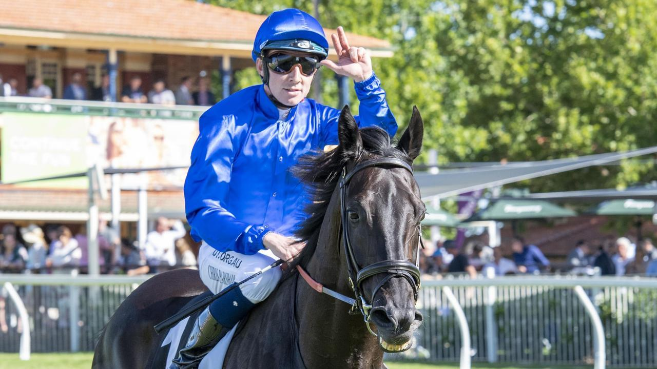 Chris Parnham steered Kementari to his drought-breaking win in Perth last year and will be aboard for his first-up run in the William Reid Stakes. Picture: Supplied