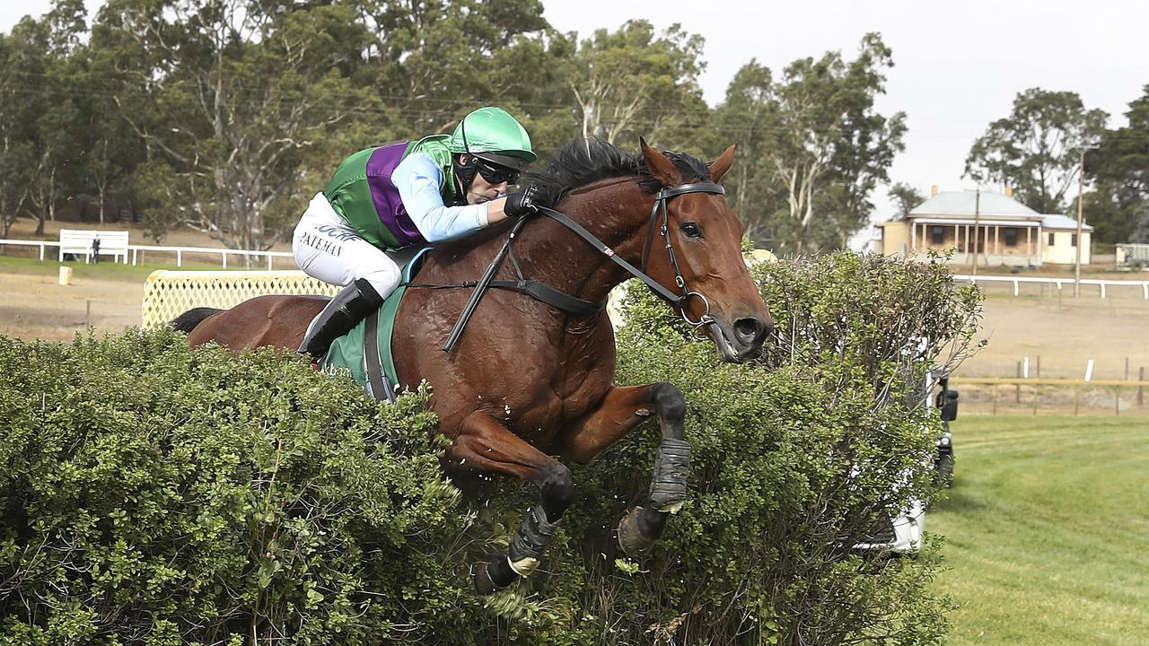 Zed Em and Steven Pateman winning at Oakbank in 2019. Picture: Sarah Reed