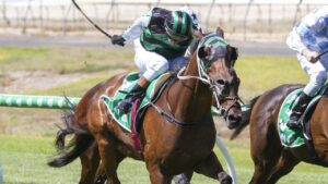 Casino Seventeen scored a tough win at Morphettville. Picture: Atkins Photography
