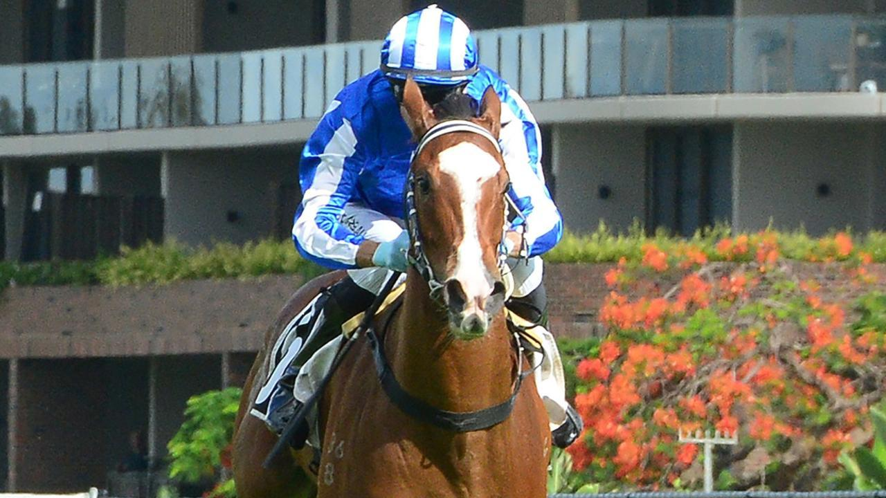 Sweet Dolly scored an impressive win in the 2YO Jewel at Gold Coast. Picture: Grant Peters