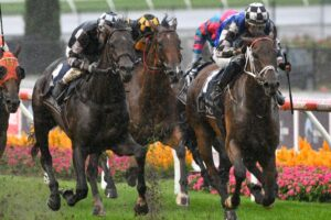 Mugatoo (inside) gets the better of Russian Camelot to win the All-Star Mile.