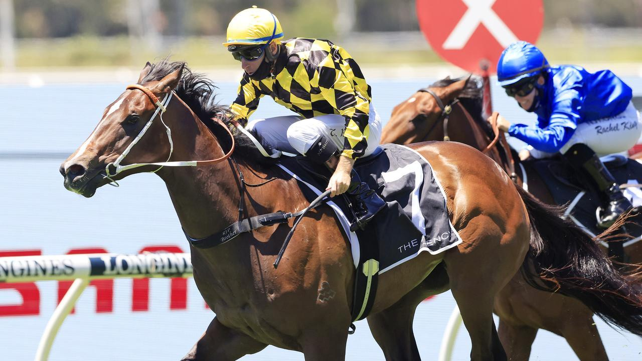 Remarque will be out to secure a Golden Slipper spot when he lines up in the Todman Stakes. Picture: Getty Images