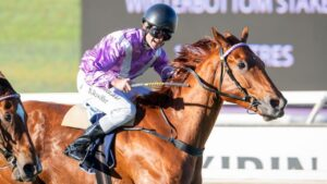 Elite Street can get back to winning ways on Saturday. Photo: Racing and Wagering WA.
