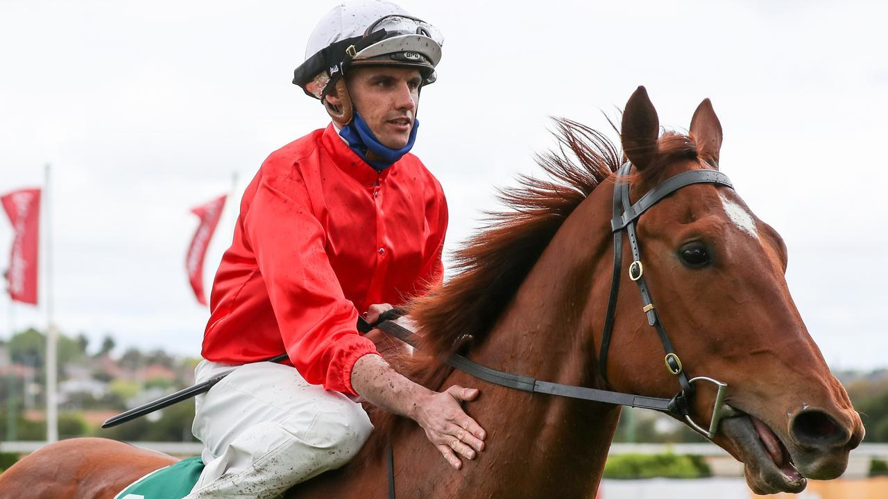 Billy Egan is hoping Cherry Tortoni can deliver the entire Patrick Payne team a Group 1 win. Picture: Racing Photos
