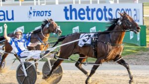 Lochinvar Art was a shock scratching from the Newcastle Mile. Photo: Stuart McCormick