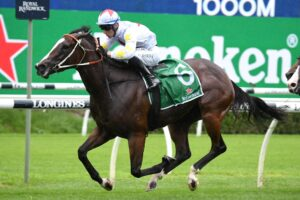 Is Written Beauty the best horse that went around at Randwick on Saturday?