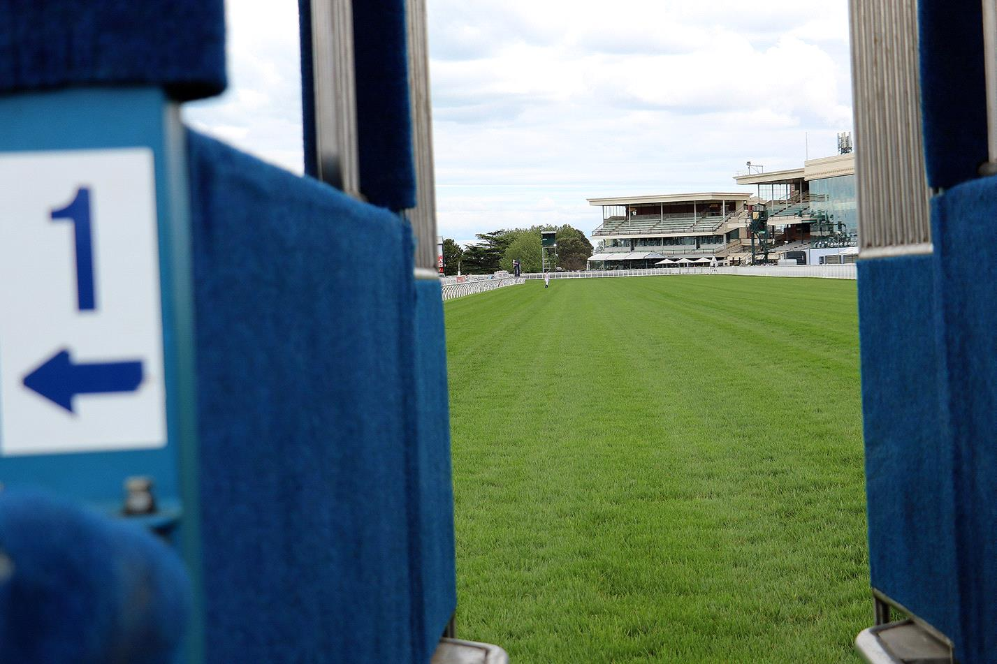 The barriers have been drawn for Saturday's Memsie Stakes at Caulfield.