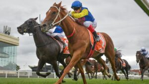 All Banter ridden by Craig Williams held on to win the WJ Adams Stakes at Caulfield on Australia Day. Photo: Reg Ryan/Racing Photos via Getty Images.