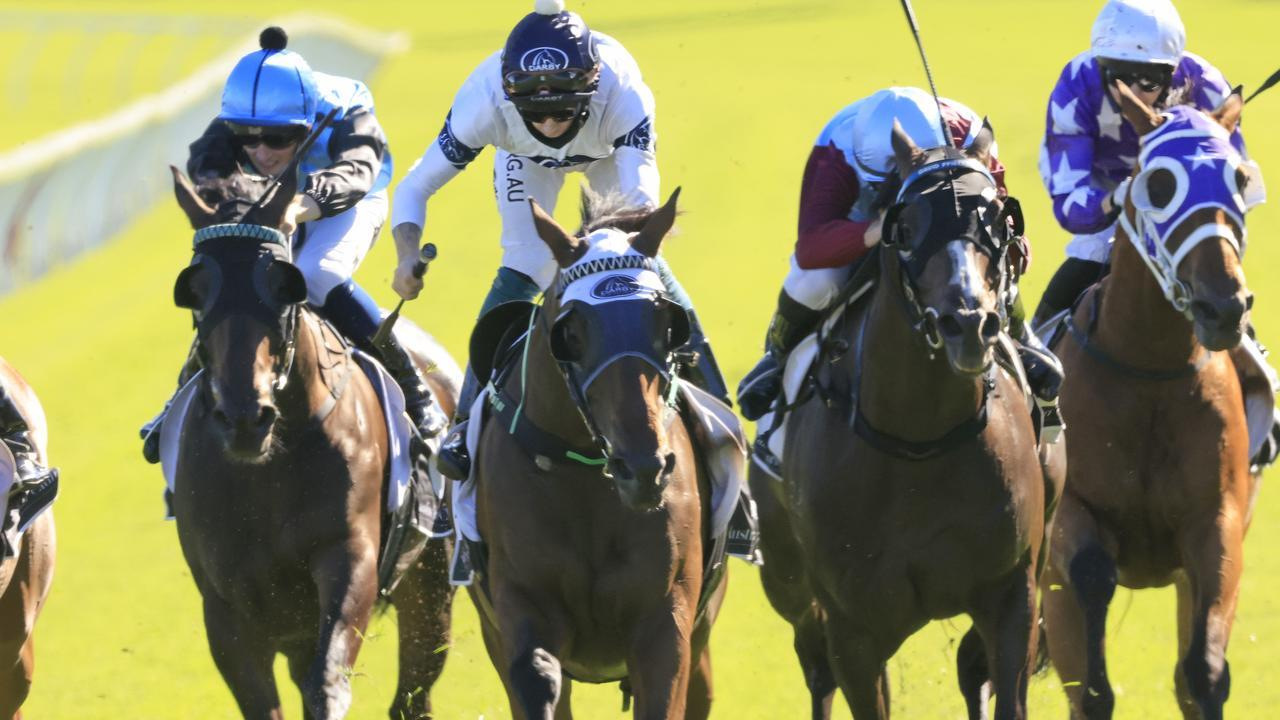 Robbie Dolan and Spirit Ridge complete the Summer Cup/January Cup double at Royal Randwick. Picture: Getty Images