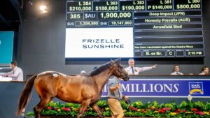 The 2021 Magic Millions sales kick off on Tuesday but restrictions have been applied for Greater Brisbane visitors. Picture by Luke Marsden.