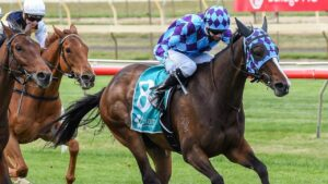Princess Jenni is in peak condition for the Perth Cup on Saturday. Picture: Racing Photos via Getty Images