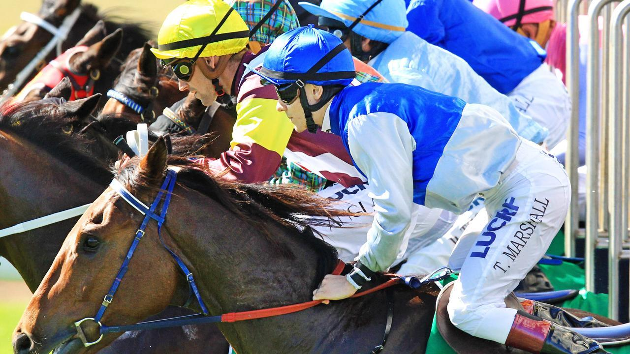 Thoroughbred action heads to Wagga and Ballina in NSW on Monday afternoon.