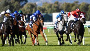 The South Australian racing industry is waiting anxiously. AAP Image/David Mariuz
