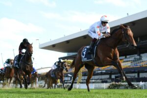 Pierro won the Golden Slipper in 2012 and a sibling will be sold at the Magic Millions.
