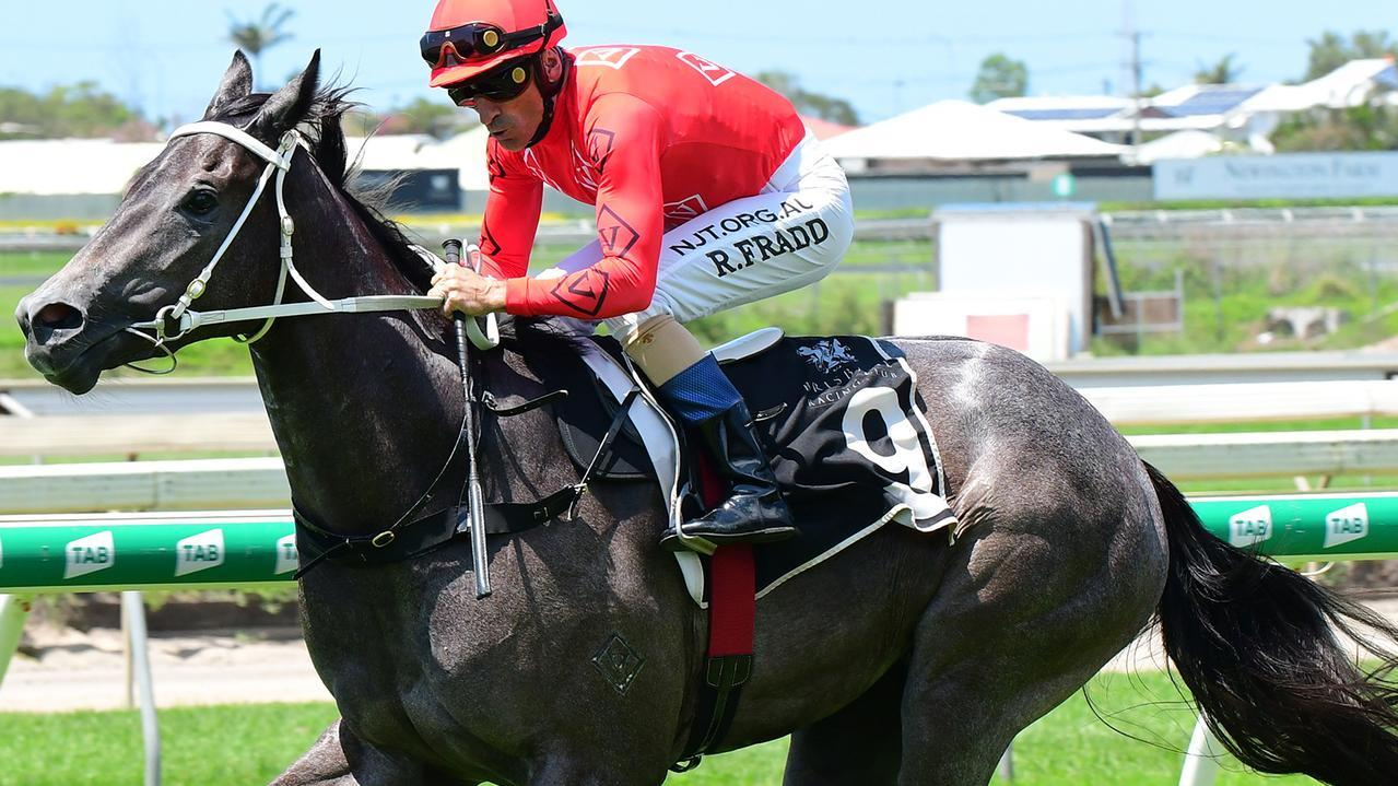 Voodoo Crown can get back to winning form at Grafton on Tuesday. Picture: Vanessa Johnston
