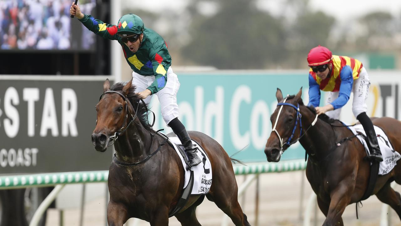 Alligator Blood wins the Magic Millions 3YO Guineas on the Gold Coast this year.