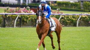 Aysar is set to start a short-priced favourite in Saturday's Sandown Guineas.