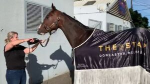 Doncaster Mile winner Nettoyer celebrating with some bubbles and pizza. Picture: Supplied