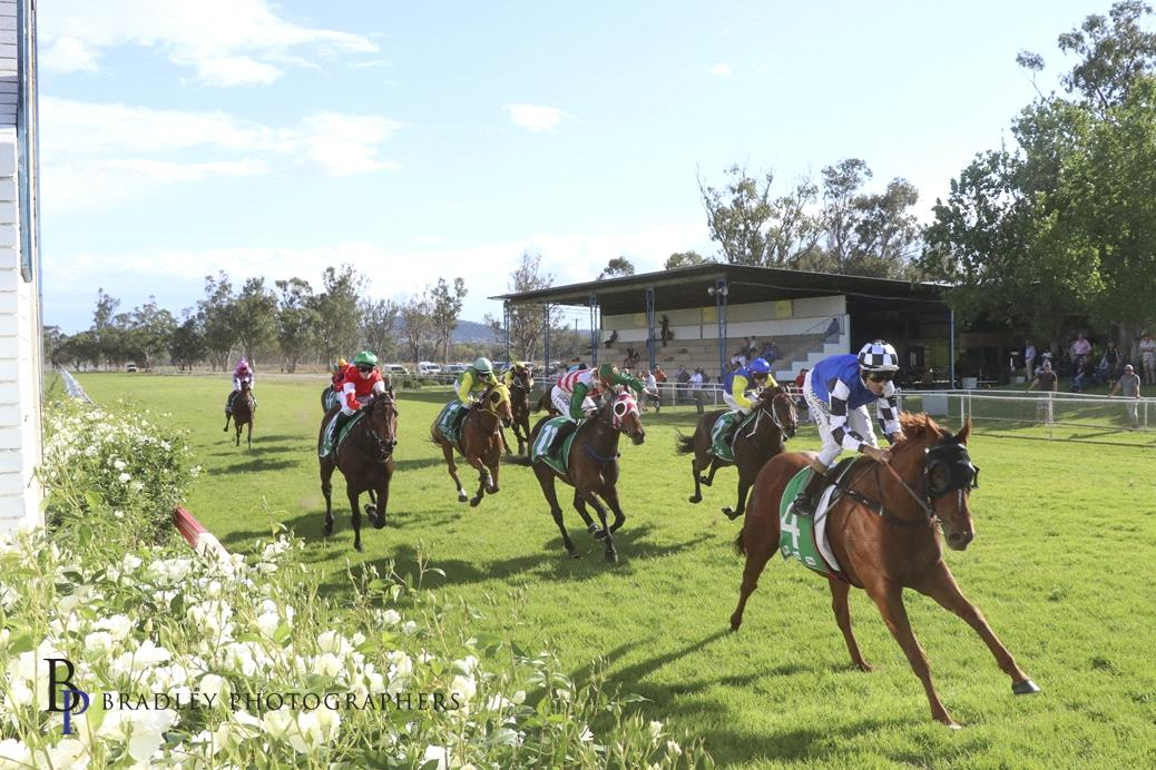 Saint Ambrose winning at Gunnedah recently.