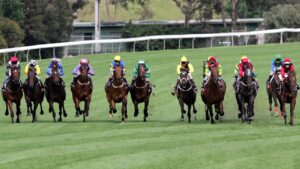 The field spread wide as they charge up the side of the track and into the straight in the 2005 Cox Plate won by Makybe Diva. Photo: Rob Leeson/News Corp