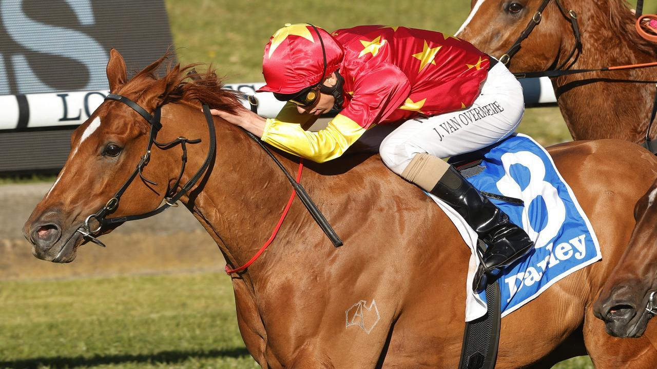 Prime Star is on the second line of betting for the Bondi Stakes at Royal Randwick. Picture: Getty Images