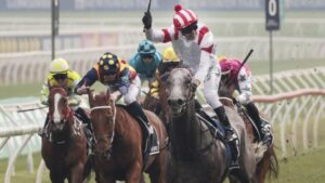 Classique Legend wins The Everest