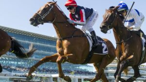 South Australian Dalasan will chase his maiden Group 1 win in the Caulfield Cup.