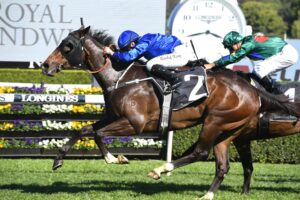 Flit is among Godolphin's Golden Eagle hopes.