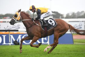 Star Of The Seas is favourite for the Epsom Handicap.