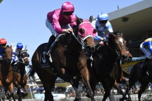 I'm confident Nimalee (right) wins on Wednesday and features in tougher spring races.
