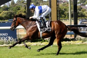 Catalyst is currently the $3.20 favourite to take out the 2020 Australian Guineas