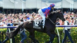 Jockey Michael Walker won't be aboard Prince Of Arran in the 2020 Melbourne Cup. Photo: AAP/James Ross.
