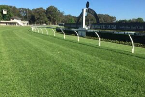 The Warwick Farm track is expected to be in mint condition.