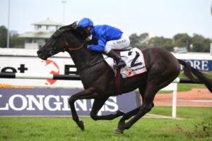 Avilius is nominated for the Group 1 George Main Stakes.